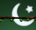 Pakistan Flag in reflection of water drop - Independence Day